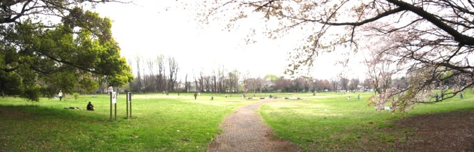 Koganei-Park